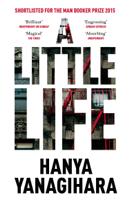 Hanya Yanagihara - A Little Life artwork
