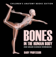 Bones In The Human Body: 2nd Grade Science Workbook  Children's Anatomy Books Edition