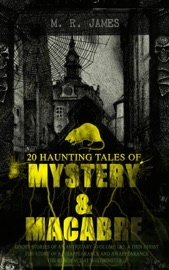20 HAUNTING TALES OF MYSTERY & MACABRE: GHOST STORIES OF AN ANTIQUARY - VOLUME 1&2, A THIN GHOST, THE STORY OF A DISAPPEARANCE AND AN APPEARANCE, THE RESIDENCE AT WHITMINSTER…