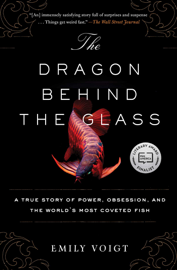 The Dragon Behind the Glass book