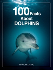 100 Facts About Dolphins