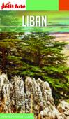 LIBAN 2020 Petit Futé