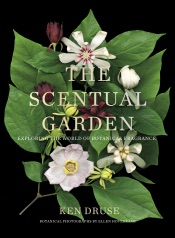 The Scentual Garden