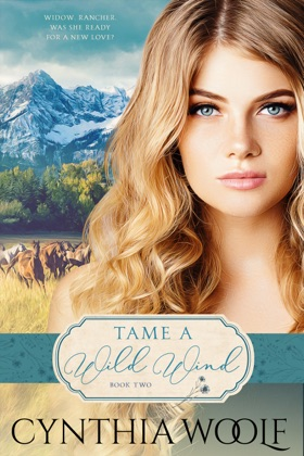 Tame a Wild Wind image