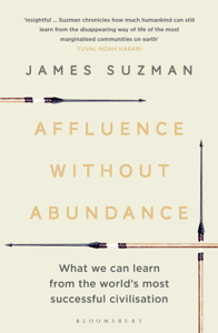 Affluence Without Abundance Buch-Cover