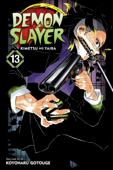 Demon Slayer: Kimetsu no Yaiba, Vol. 13 Book Cover