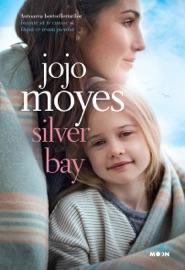 Silver Bay PDF Download