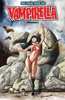 Christopher Priest, Kurt Busiek, Ergün Gündüz & Arthur Adams - Vampirella (Vol 5) #0  artwork