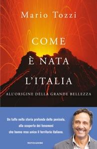 Come è nata l'Italia Book Cover