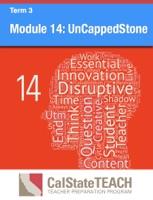Module 14: UnCappedStone