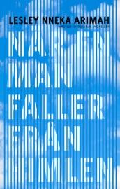 När en man faller från himlen PDF Download