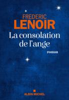 La Consolation de l'ange ebook Download