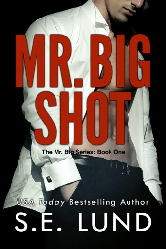 Mr. Big Shot - S. E. Lund