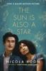 Nicola Yoon - The Sun is also a Star artwork