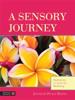 Jennifer Peace Peace Rhind - A Sensory Journey artwork