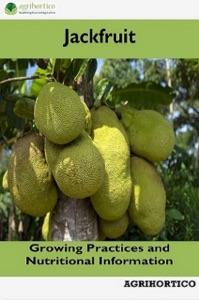 Jackfruit Book Cover