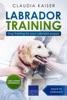 Labrador Training: Dog Training for Your Labrador Puppy