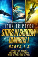 John Triptych - Stars in Shadow Omnibus 1 artwork