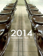 2014 November Vol. 11
