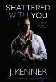 Shattered With You PDF Download