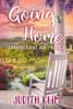 Judith Keim - Going Home  artwork