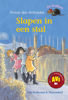 Vivian den Hollander - Slapen in een stal artwork