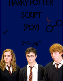 Harry Potter POV