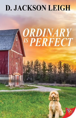 Ordinary is Perfect