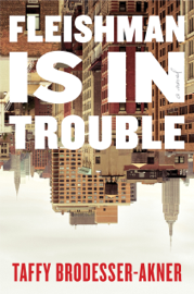 Fleishman Is in Trouble PDF Download