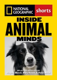 Inside Animal Minds - Mary Roach, Virgina Morell & Peter Miller by  Mary Roach, Virgina Morell & Peter Miller PDF Download
