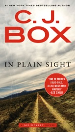 In Plain Sight PDF Download