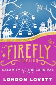 Calamity at the Carnival book
