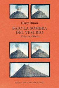 Bajo la sombra del Vesubio Book Cover
