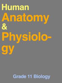 Human Anatomy & Physiology 3.0