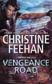 Vengeance Road book