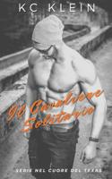 Il Cavaliere Solitario ebook Download
