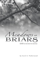Meadows Or Briars