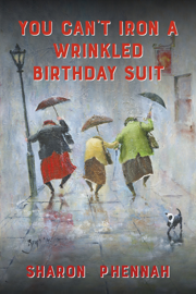 You Can't Iron a Wrinkled Birthday Suit PDF Download