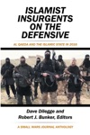 Islamist Insurgents On The Defensive
