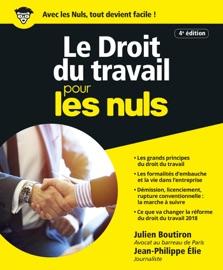 Le Droit Du Travail Pour Les Nuls Grand Format 4e Dition