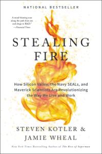 Stealing Fire Boekomslag