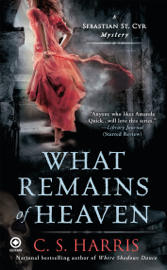 What Remains of Heaven book