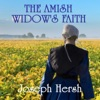 The Amish Widows Faith Boxed Set