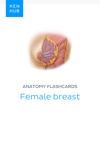 Anatomy flashcards: Female breast