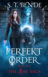 Perfekt Order (The Ære Saga Book 1) - ST Bende book summary