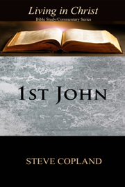 1st John: Living in Christ: Bible Study/Commentary Series book