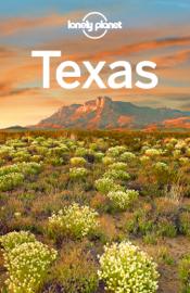 Texas Travel Guide book
