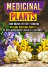Medicinal Plants Learn About The 9 Best Amazing Natural Plants To Heal And Protect Your Self Naturally