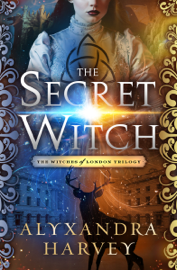 The Secret Witch book