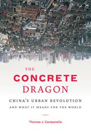 The Concrete Dragon book